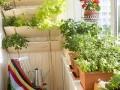 简单而舒适的花园设计效果图