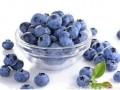 蓝莓多少钱一斤2018?蓝莓为什么那么贵