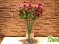 高花瓶适合养什么花?高花瓶的插花技巧