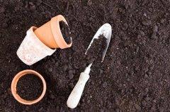 花盆土壤杀菌消毒用什么药好