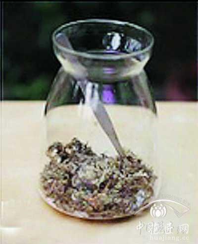 苔藓微景观制作教程——铺设水苔