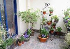 阳台花园布局的风水要点