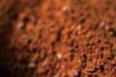 用咖啡渣正确养花方法